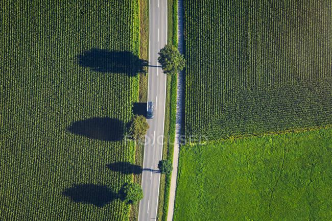 Alemania, Chiemgau, campo y carretera en verano - foto de stock