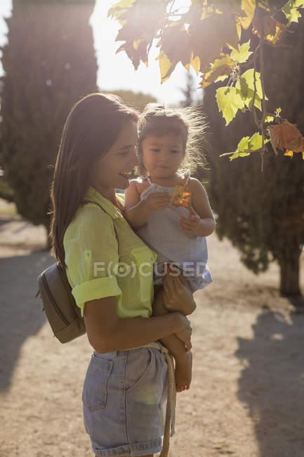 Madre explicando la hoja hija de un árbol en el parque - foto de stock