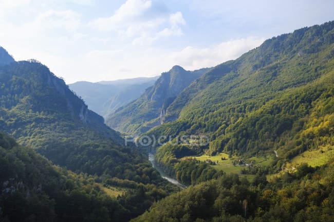 Чорногорія, провінція Плєлеха, Національний парк Дурміор, Каньйон тара, вид з мосту Дурдевіца тара — стокове фото
