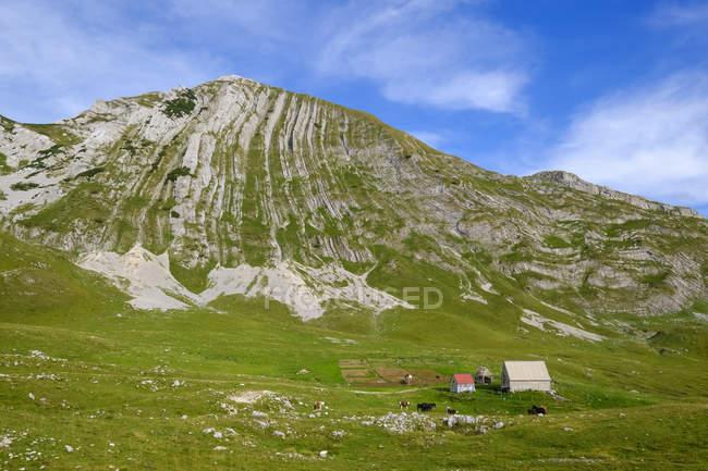 Montenegro, Durmitor National Park, Durmitor massif, mountain Prutas — стокове фото
