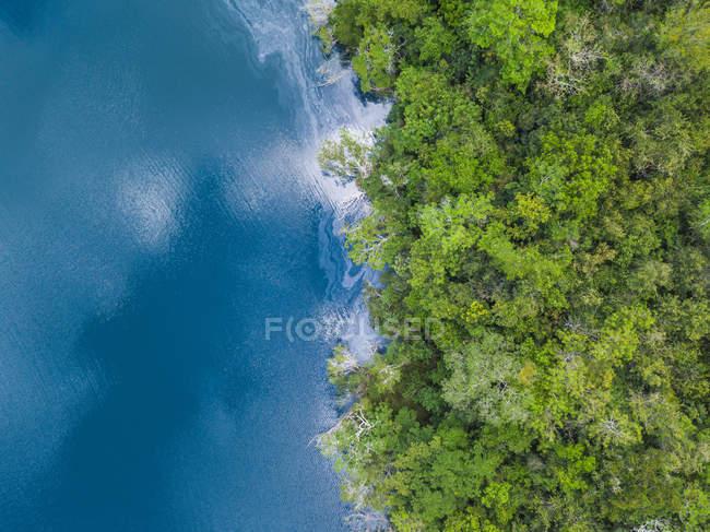Mexiko, Yucatan, Quintana Roo, lagoon of Bacalar, green trees and lake, drone image — Stock Photo