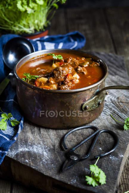 Sopa de goulash com a salsa Lisa da folha — Fotografia de Stock