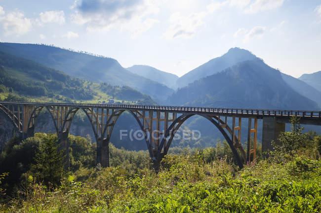 Чорногорія, провінція Плєльха, Національний парк Дурміор, Каньйон, ущелина, міст Дурдевіца — стокове фото