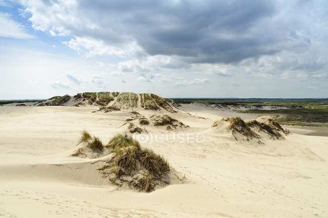 Denmark, Jutland, Rabjerg Mile shifting dunes — Stock Photo