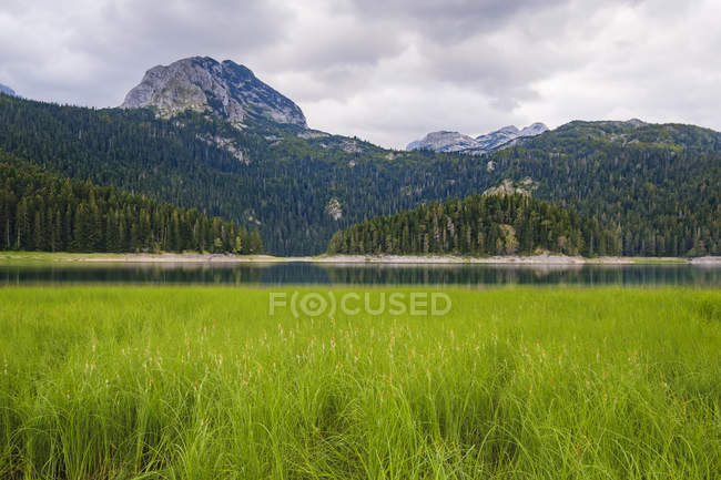 Чорногорія, Жабляк область, Національний парк Дурміор, чорне озеро — стокове фото