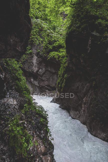 Германия, Бавария, Партнахское ущелье возле Гармиш-Партенкирхена — стоковое фото