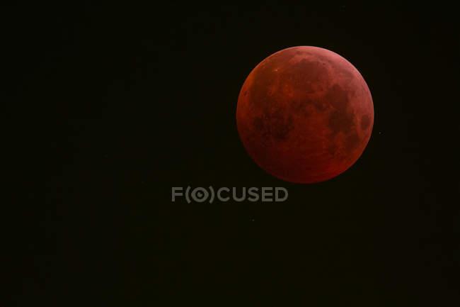 Alemania, Fráncfort del Meno, eclipse lunar total durante el eclipse máximo - foto de stock