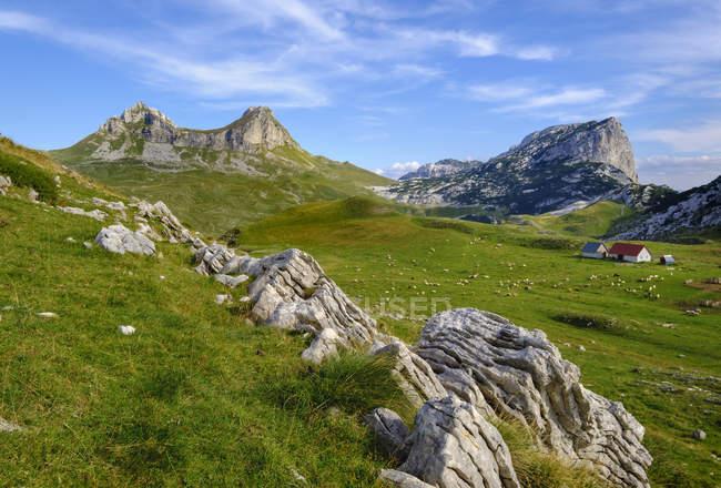 Montenegro, Durmitor National Park, Durmitor massif, mountain pasture Sarban, mountains Sedlo and Boljska Greda — Stock Photo