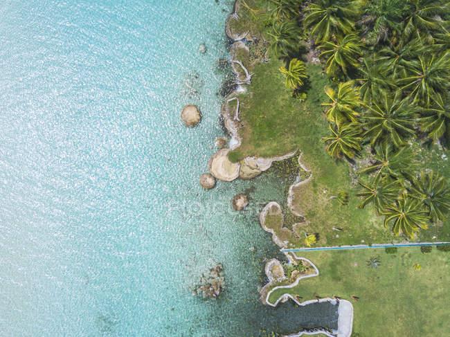 Мексико, Юкатан, Кинтана Ру, лагуна Бакалар, пальмы у бирюзовой воды, изображение беспилотника — стоковое фото