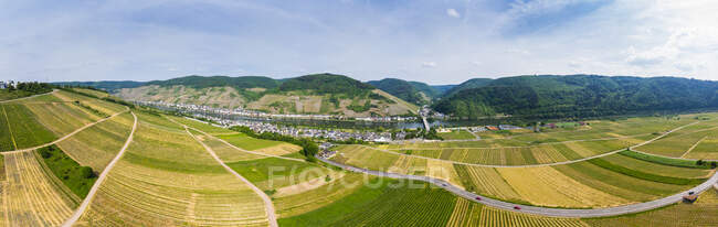 Germany, Rhineland-Palatinate, Zell an der Mosel, vine yards — Stock Photo