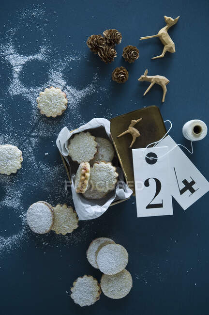 Рождественские печенья Spitzbuben в жестяной банке, деревянные статуэтки косули оленя, лиственница конусы, подарочные бирки — Stock Photo