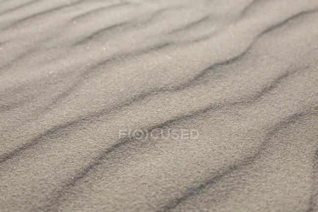 Patrón de onda en la playa de arena, primer plano - foto de stock