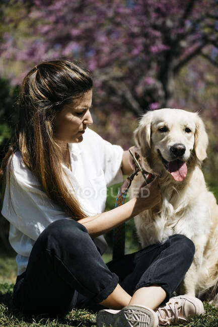Woman and Labrador Retriever  sitting on meadow in city park — Stock Photo