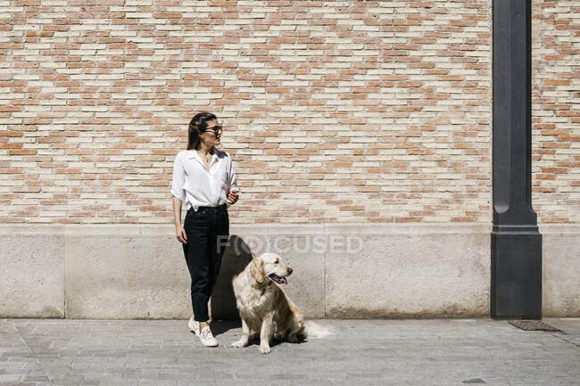 Woman and her Labrador Retriever waiting in front of patterned brick wall looking at distance — Stock Photo