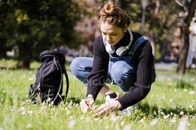 Молодая женщина собирает маргаритки в парке — стоковое фото