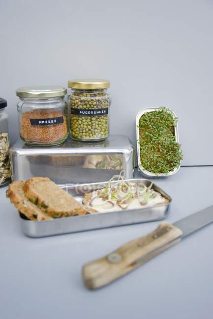 Бутерброд із проростками та просочувальними породами. — стокове фото