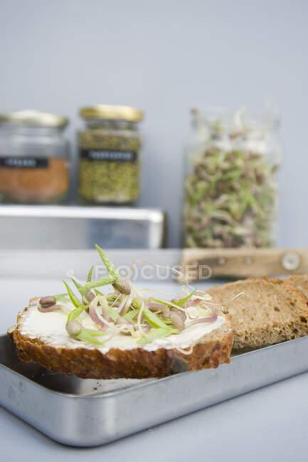 Зерновий сендвіч з витоками манги. — стокове фото