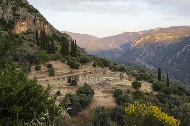 Grèce, Delphes, tholos dans le sanctuaire d'Athéna Pronaia — Photo de stock