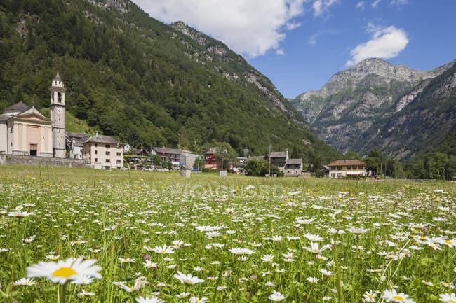 Suiza, Ticino, pueblo de Sonogno, prado alpino - foto de stock