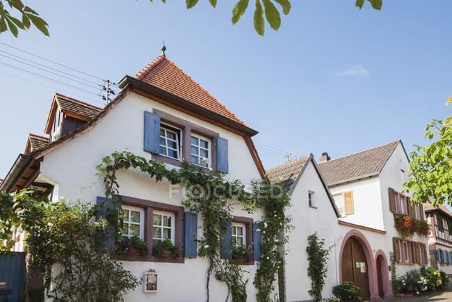 Alemania, Rhodt unter Rietburg, Ruta del vino alemán, casas históricas típicas - foto de stock