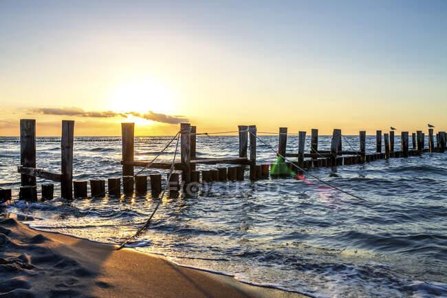 Germany, Mecklenburg-Western Pomerania, Zingst, groynes at sunset — Foto stock