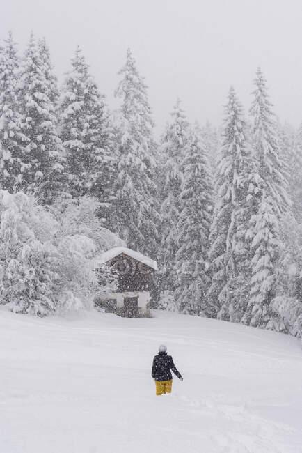 Finlandia, Kuopio, mujer caminando en nevadas a través del paisaje invernal - foto de stock