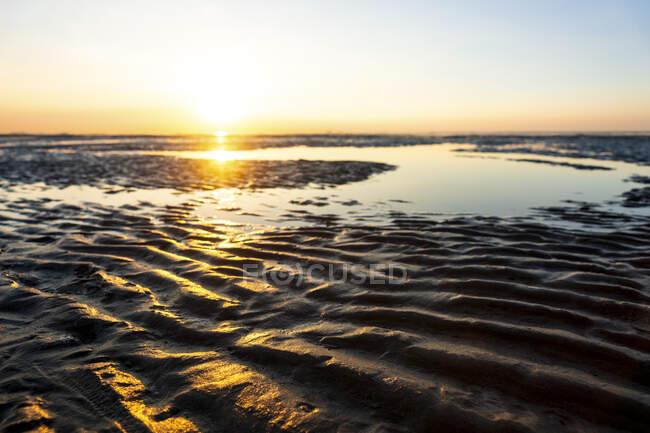 Germania, Mare del Nord, Cuxhaven, pianura fangosa, spiaggia — Foto stock