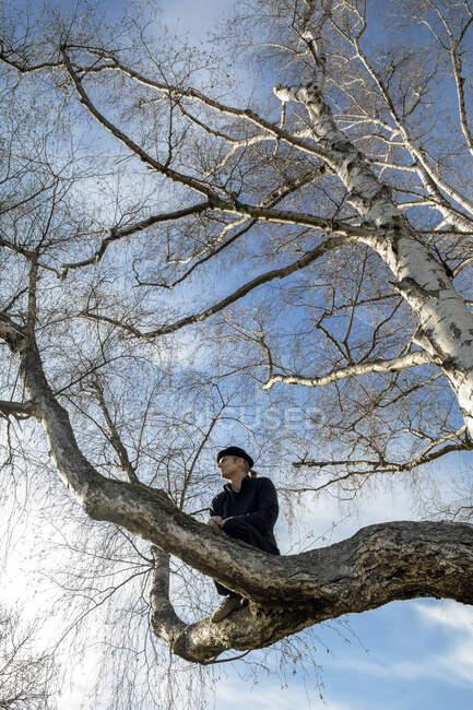 Uomo seduto sull'albero che guarda fuori — Foto stock