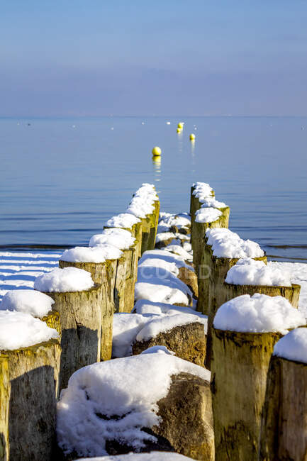 Switzerland, Arbon, Lake Constance, wooden stakes at the lakeshore in winter — Foto stock