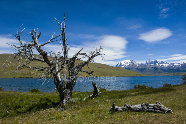 Chile, Patagonia, Torres del Paine National Park, glacier lake with mountains in background — Stock Photo