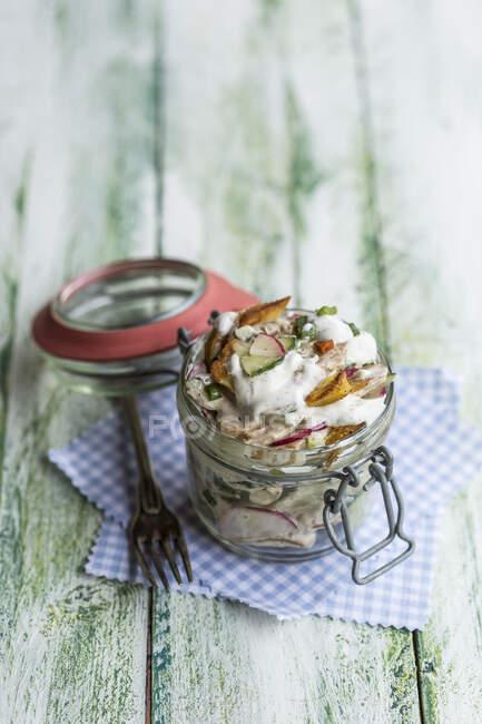 Склянка смаженого картопляного салату з огірком, червона редиска, весняна цибуля і майонез йогурт. — стокове фото