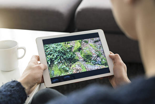 Woman looking at photo on digital tablet, partial view — Stock Photo