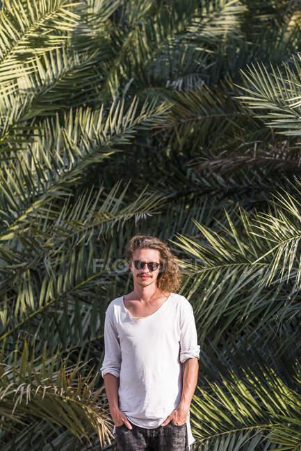Viajero de pie frente a las palmeras, Bidbid, Ad Dakhiliyah, Omán - foto de stock