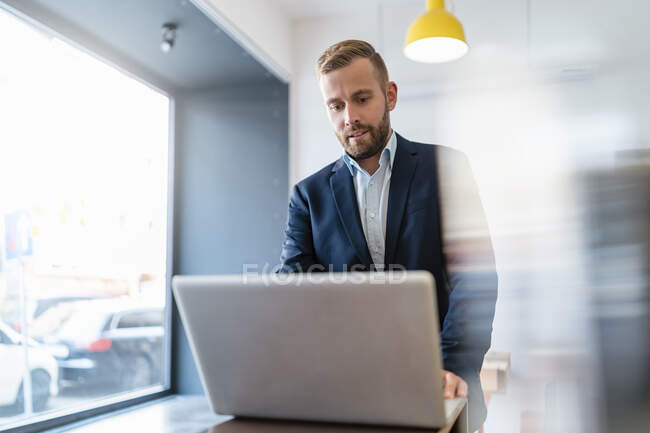 Businessman using laptop in office — Stock Photo