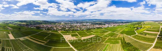 Germany, Rhineland-Palatinate, Ingelheim, Aerial view over vineyards — Stock Photo
