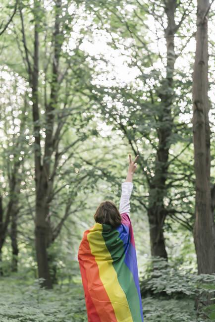 Vista trasera de una mujer cubierta con una bandera del arco iris que muestra la señal de victoria - foto de stock