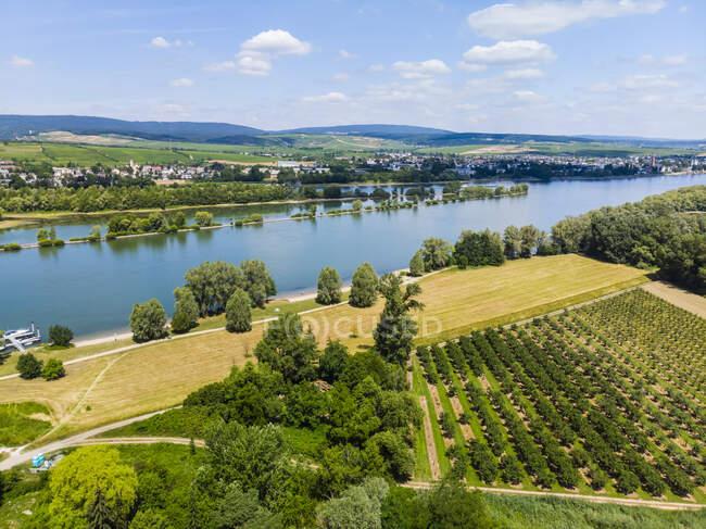 Germany, Rhineland-Palatinate, Aerial view of Heidesheim am Rhein, Rhine river and Eltville — Stock Photo