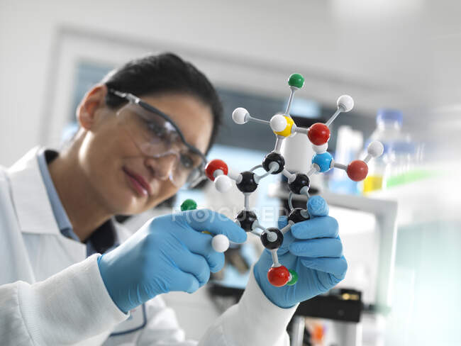 Биотехнологические исследования, ученый, изучающий молекулярную модель шара и палки химической формулы во время эксперимента — стоковое фото