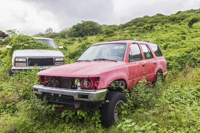 Автомобили, Мауи, Гавайи, США — стоковое фото