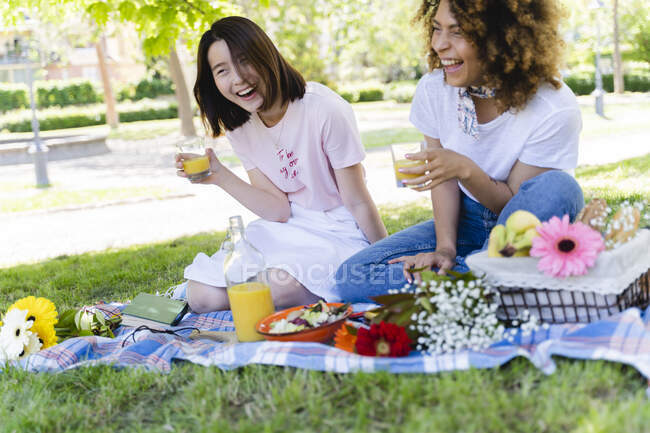 Zwei lachende Frauen beim Picknick im Park — Stockfoto