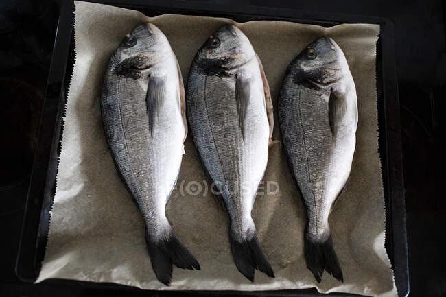 Three sea breams on baking tray — Stock Photo
