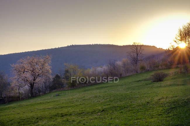 Sunrise, Ehrenberg, Rhoen, Germany - foto de stock