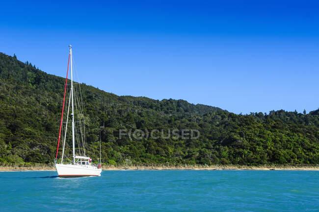 Якорь для парусных лодок в Национальном парке Абель Тасман, Южный остров, Новая Зеландия — стоковое фото