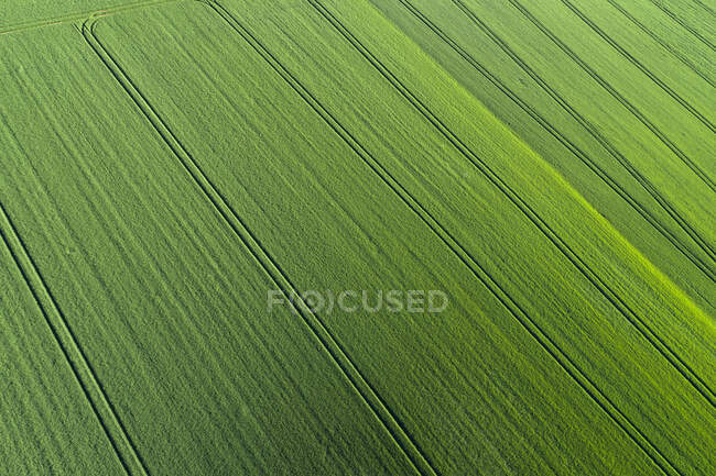 Aerial View of abstract green agricultural field, springtime, Franconia, Bavaria, Germany — Stock Photo