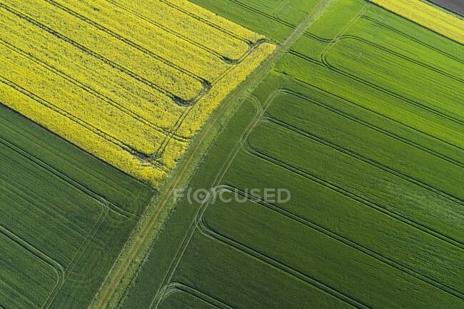 Abstract aerial view of landscape with dirt road between agricultural fields, springtime, Franconia, Bavaria, Germany — Stock Photo