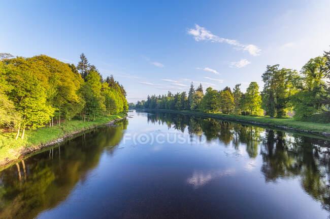 Река Тай близ Перта, Шотландия — стоковое фото