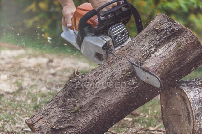 Homme joignant un tronc d'arbre à une scie à moteur — Photo de stock