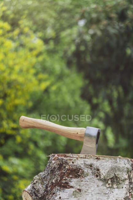 Hache dans un tronc d'arbre — Photo de stock