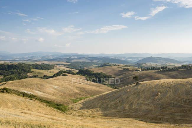 Paesaggio con campi coltivati, Toscana, Italia — Foto stock