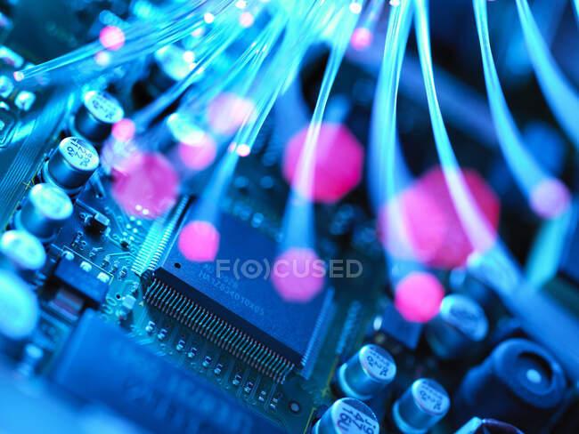 Fibra óptica transportando dados que passam através da placa de circuito eletrônico — Fotografia de Stock
